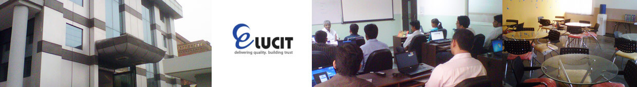 Elucit Software Services